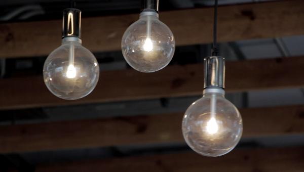 Bulbs サムネイル